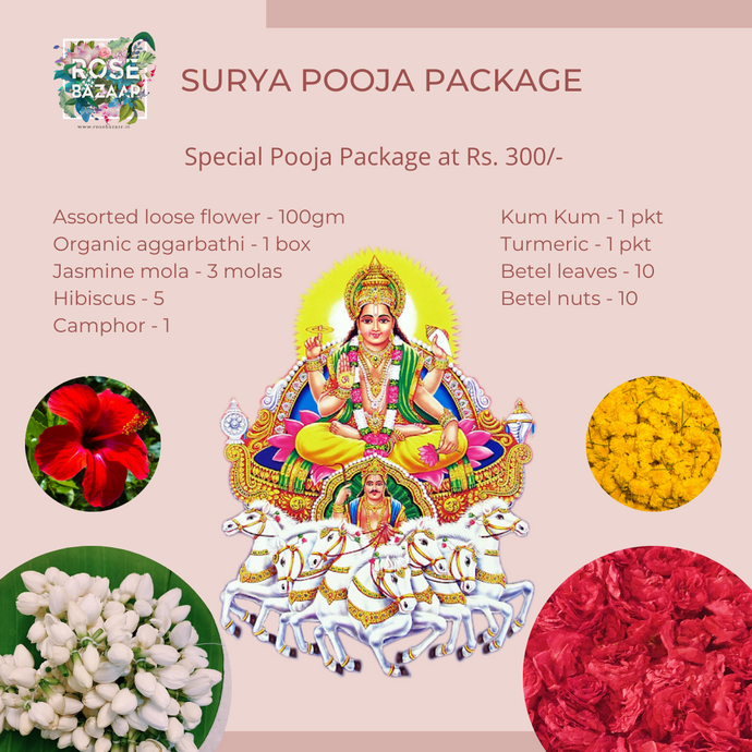 Surya Pooja Package