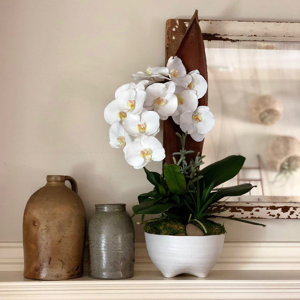 White footed planter w/ preserved palm paddle + faux orchid