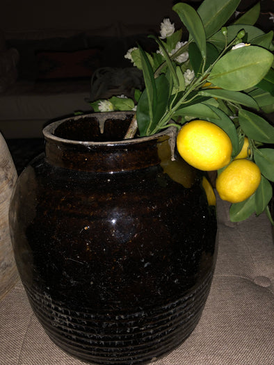 Vintage black pot w/ lemons