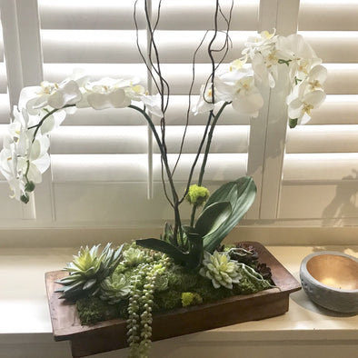 "This dark, found wood tray is a beautifully rustic + modern arrangement with faux white phalaenopsis orchids and hanging succulents; a perfect way to elevate any table.  Sizing: Each arrangement is unique and can vary in height, from 21"" to 24"" high. Larger orchids can be requested and pricing will be quoted accordingly.  Tray size: 9"" width x 22"" length x 2.75"" high"