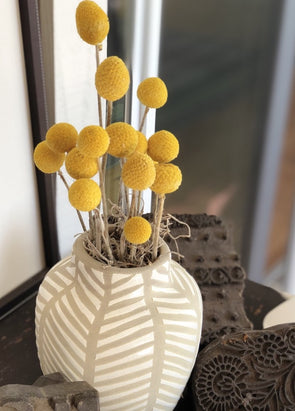 Preserved Billy Buttons in ceramic vase