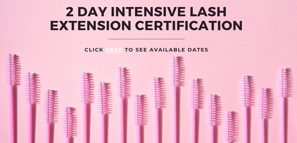 Langley Blink & Brow Co. 2 Day Intensive Lash Extension Certification