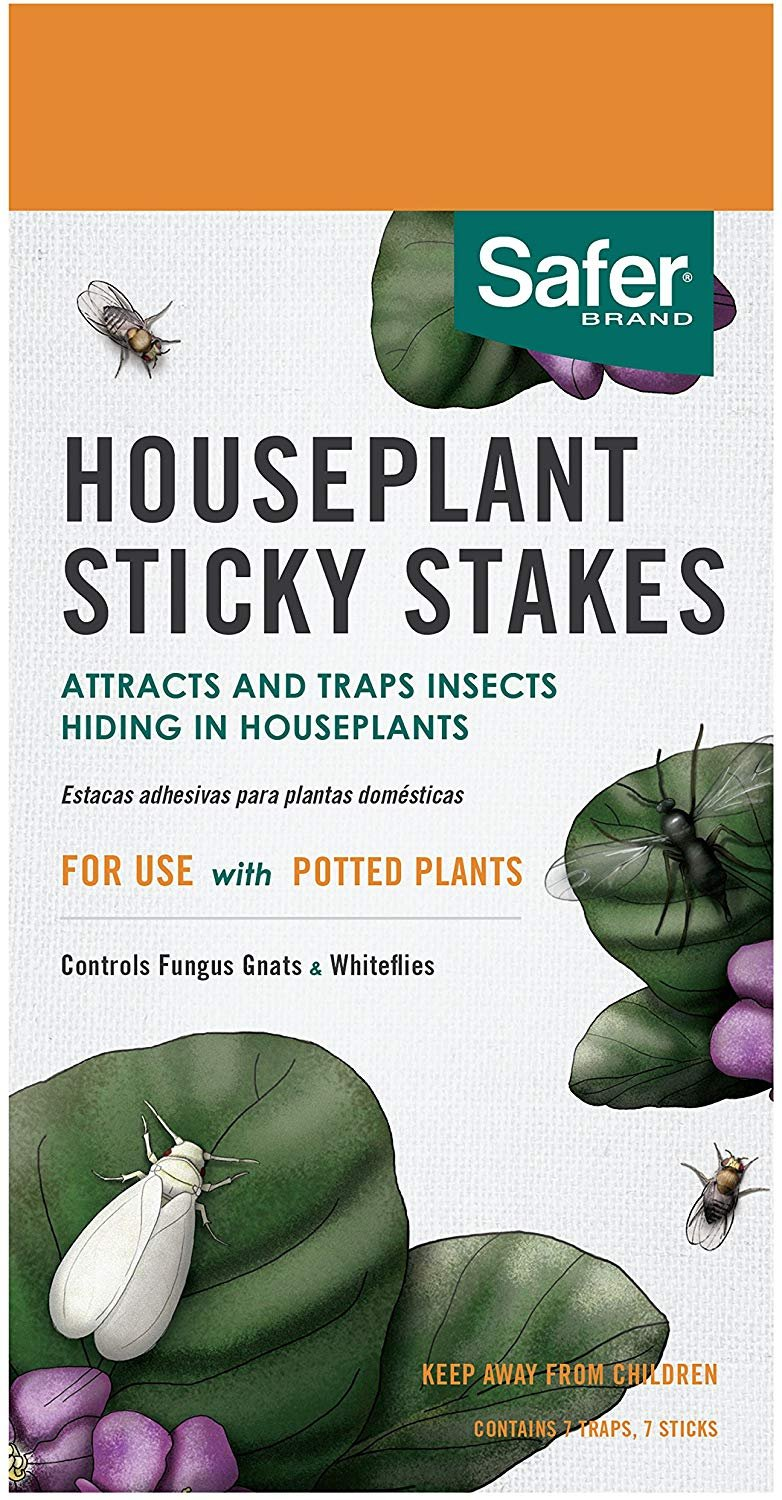 Safer Brand SF5026 Houseplant Sticky Stakes Insect Traps, 1 pack