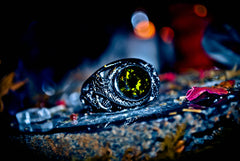 **DRUID** Elixir of Wealth Haunted Elite Ring Hidden Knowledge Secret Society Cash Flow Spell Extreme PARANORMAL Elite Occult WEALTH $$ * RARE!