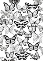 Coloring Page | Beautiful Butterflies