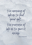 The Meaning of Life Quote - Shakespeare | Wall Art