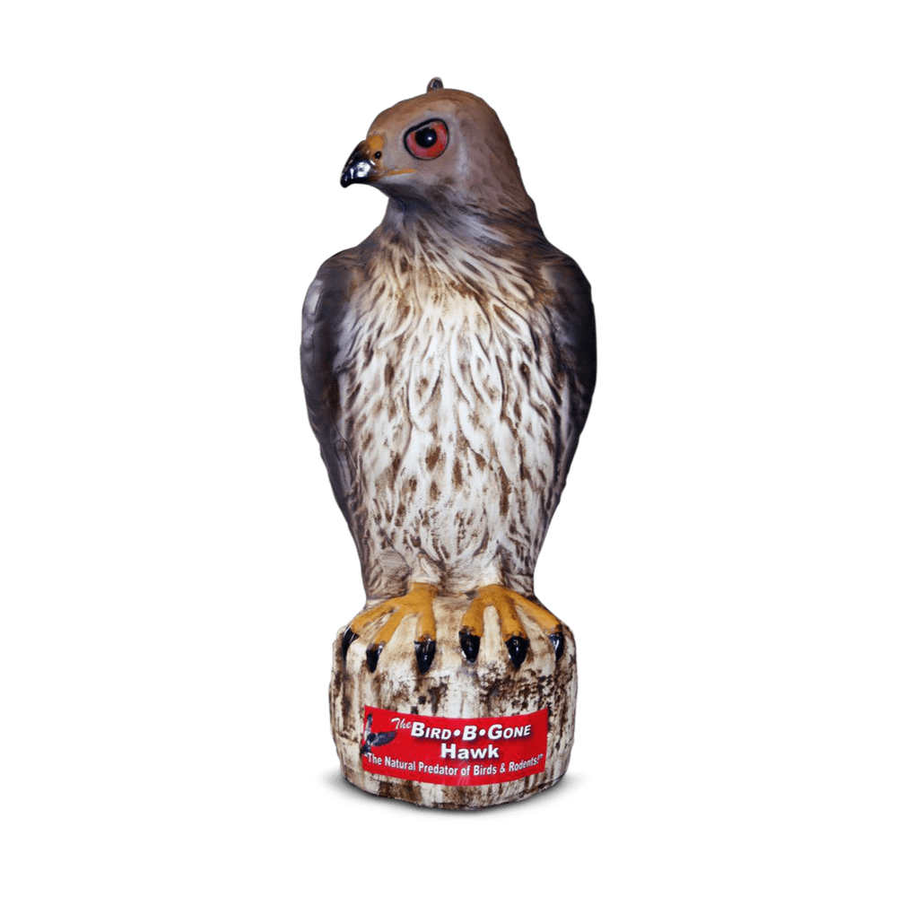 Hawk Decoy