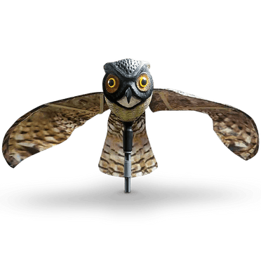 Prowler Owl – front view