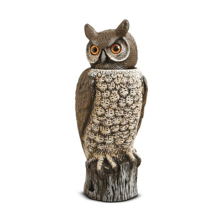 Rotating Head Owl Decoy