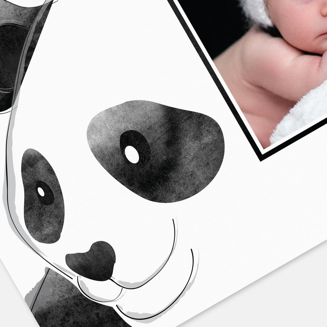 Panda Craze Birth Announcements – Detail View