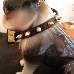 HEART PUP Collar