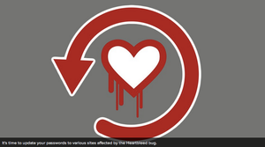 The Heartbleed Hit List: The Passwords You Need to Change Right Now