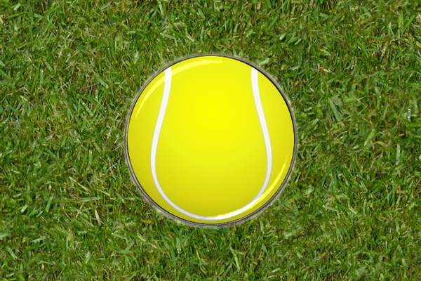 Tennis Ball Golf Ball Marker