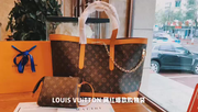 LV Neverfull Brown Monogram