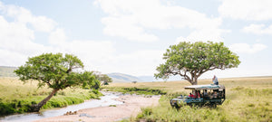 This Earth-Friendly Bespoke Safari Camp Also Time-Travels