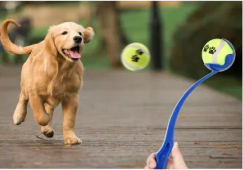 RUFF PLAY TENNIS BALL WITH THROW STICK
