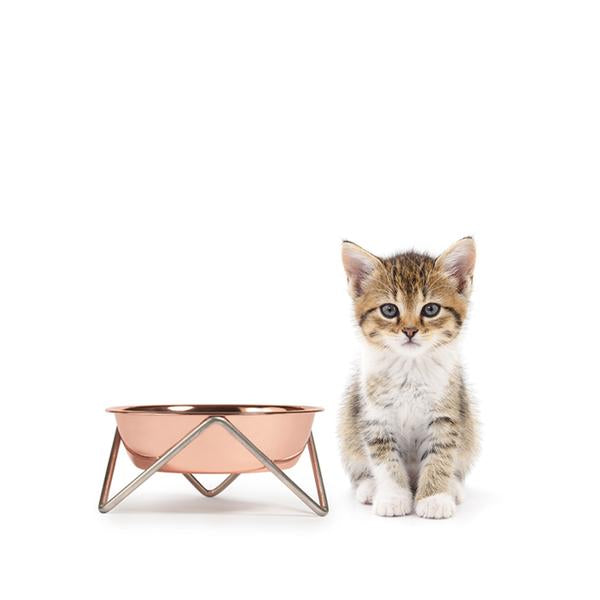 ELEVATED MEOW LUXE COPPER CAT BOWL WITH CHROME STAND - BENDO