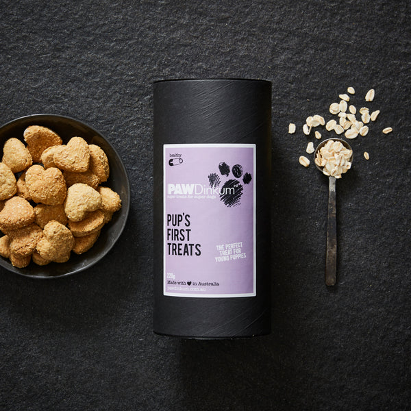 PUPS FIRST PUPPY TREATS CANISTER 220G