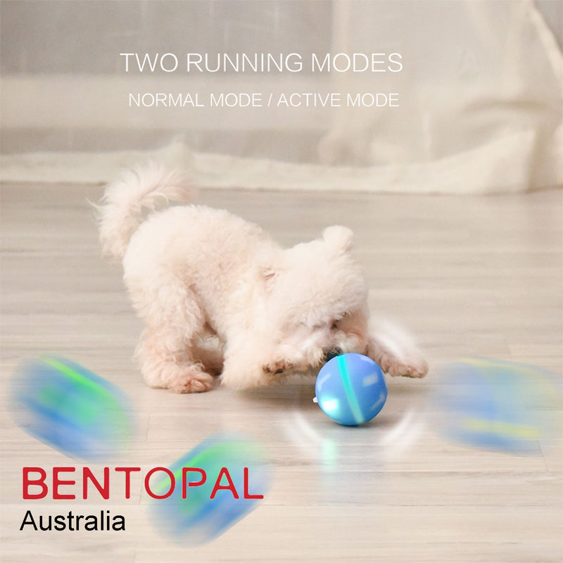 Bentopal Colourful LED Self-Rolling Smart Ball for Dog and Cats