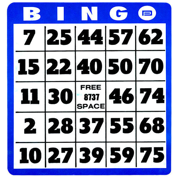 Bingo Card - Large Print