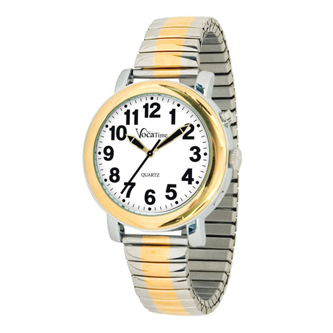 Watch, Talking - Men's Two-Tone