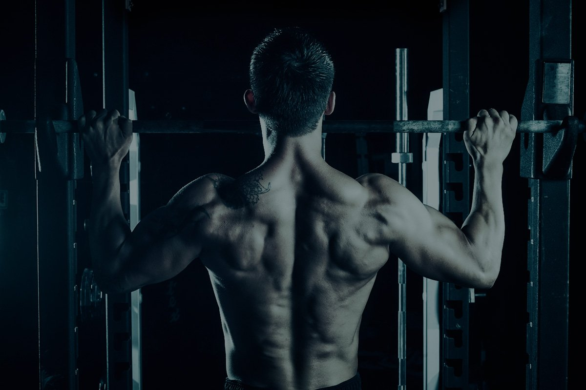 Back Day Like A Beast - Beast Sports Nutrition
