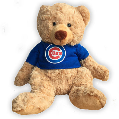 Cuddle Buddy Talking Cub