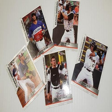 2019 Shorebirds Mini Update Card Set - featuring Adley Rutschman