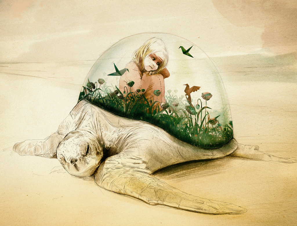 Generation.1- The turtle home