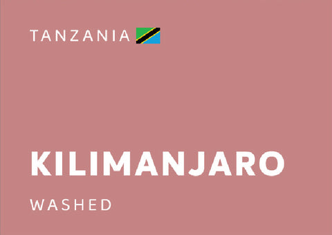 TANZANIA Kilimanjaro (Washed) - Whole Beans
