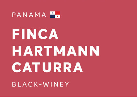 "PANAMA ""Finca Hartmann"" Caturra (Black-Winey) - Whole Beans"