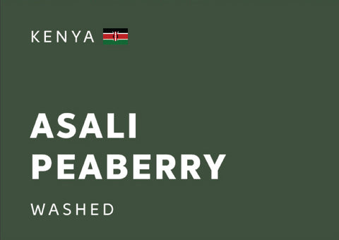 KENYA Asali Peaberry (Washed) - Whole Beans