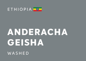 ETHIOPIA Anderacha Geisha (Washed) - Whole Beans