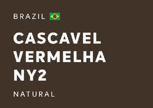 BRAZIL Cascavel Vermelha NY2 (Natural) - Whole Beans