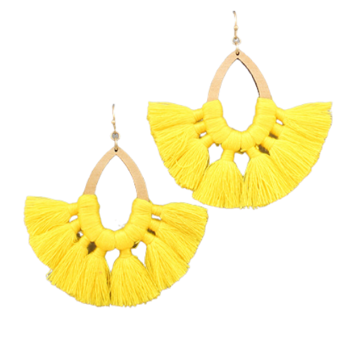 Teardrop Tassle Fan Earrings