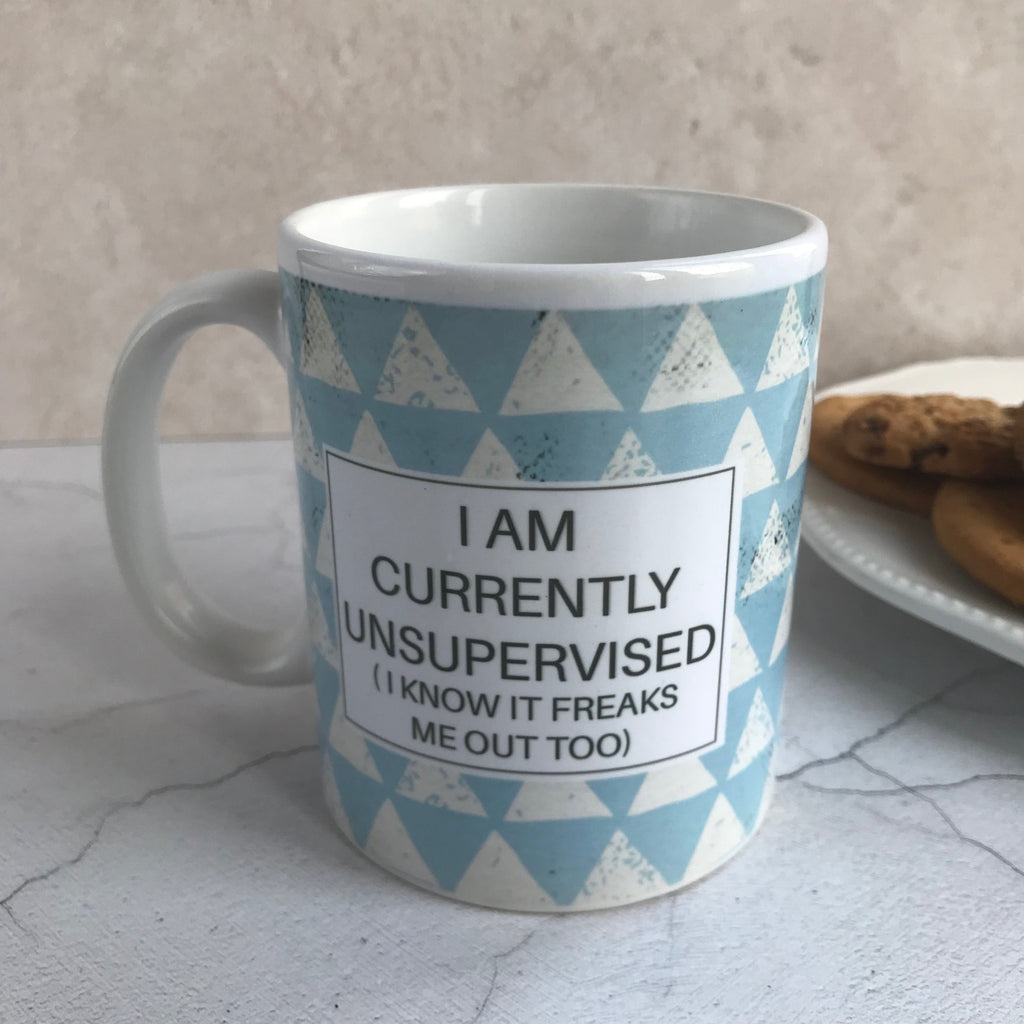 Humorous Mug,  I am currently unsupervised (I know it freaks me out too!)