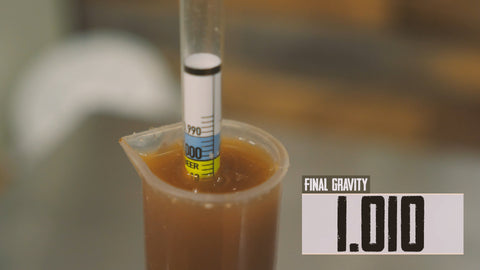 final gravity of fermented beer at 1.010 read with a hydrometer