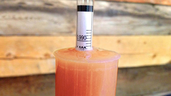 Take a hydrometer reading to calculate alcohol %