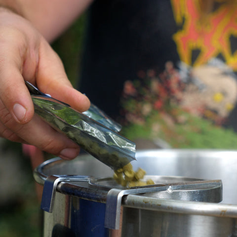 adding willamette hops to the boil