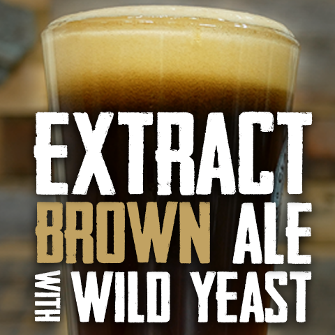extract brown ale with wild yeast