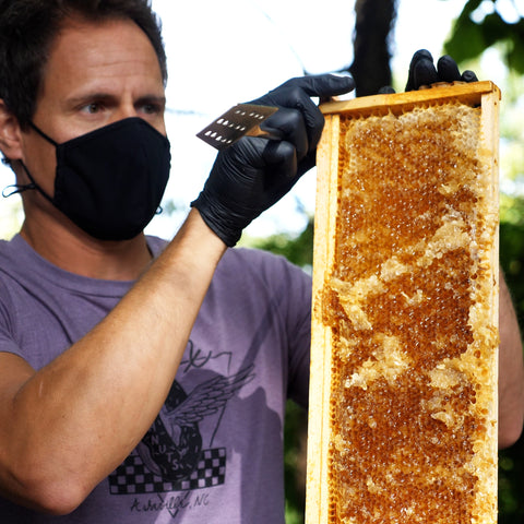 a real honeycomb we used to make our honey cider with