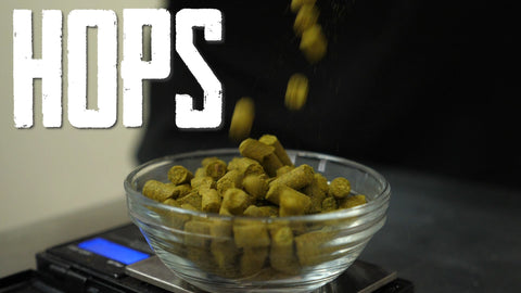hops falling into a small bowl