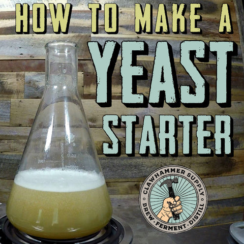 How to make a yeast starter for homebrew beer
