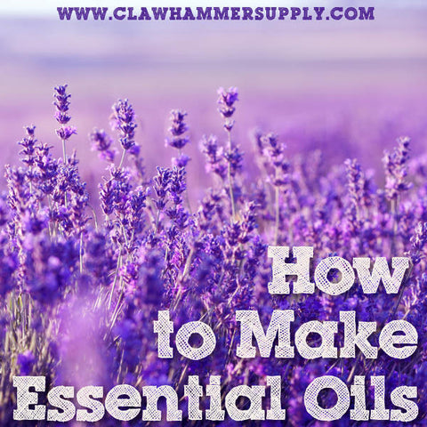 How To Make Essential Oils Using Steam Distillation