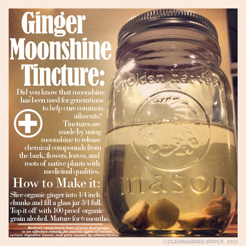 moonshine ginger tincture