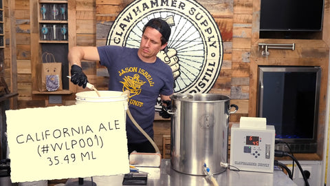 pitching California Ale Yeast