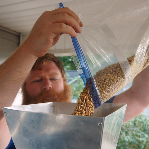 pouring grain into a grinder to crush it