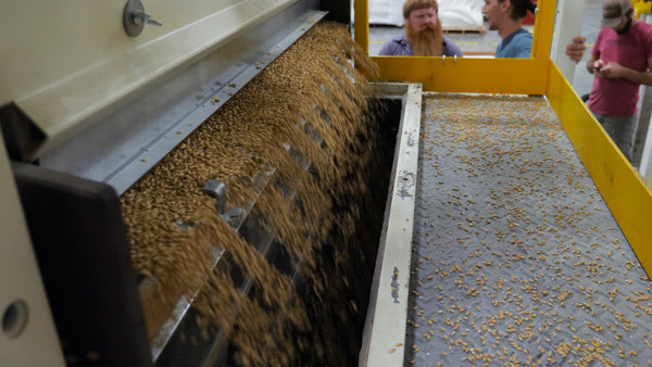 seed_cleaning