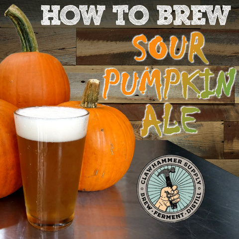 sour pumpkin homebrew beer recipe