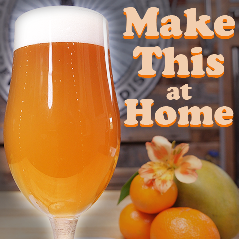 How to Make Beer at Home - Beginner's Guide